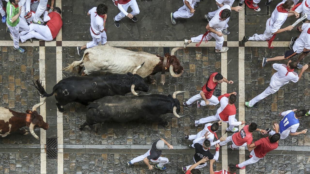 Při běhu býků v Pamploně umírají lidé při focení
