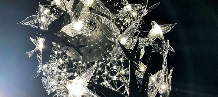 Kouzelná oáza světel Reflex