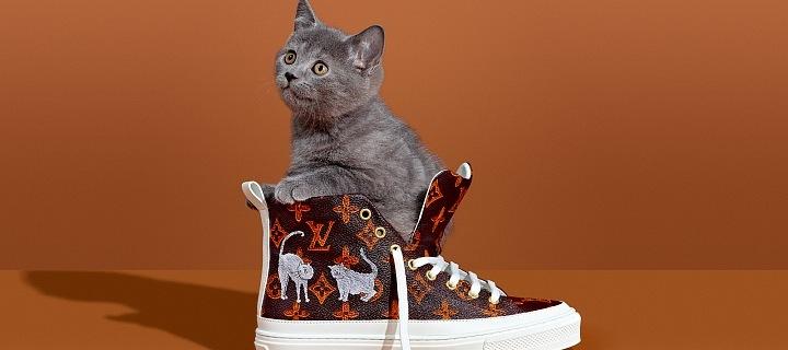 Pro všechny milovníky psů a koček je tu roztomilá kolekce Louis ... e084b6d6e77