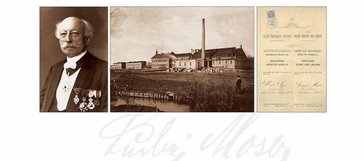 Továrna Moser, Ludwig Moser