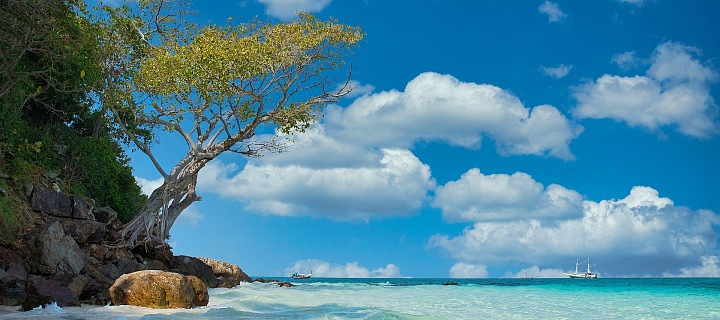 Zůstanete raději doma nebo pojedete letos k moři?