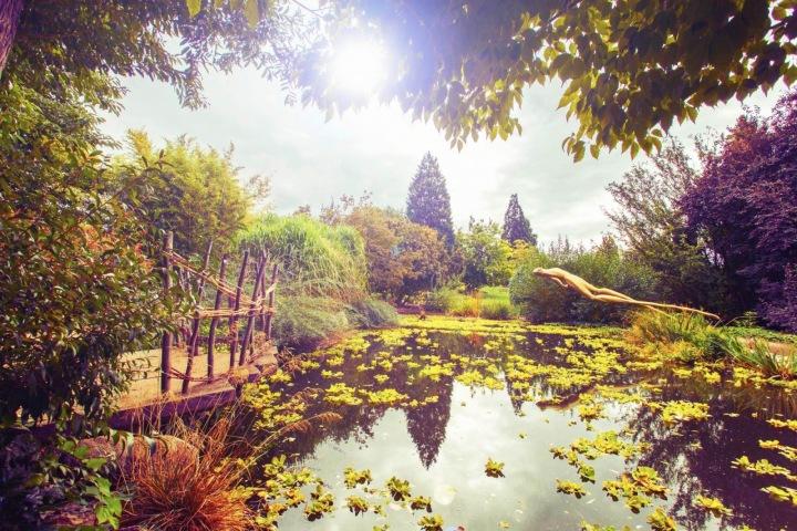 Botanická zahrada v Praze