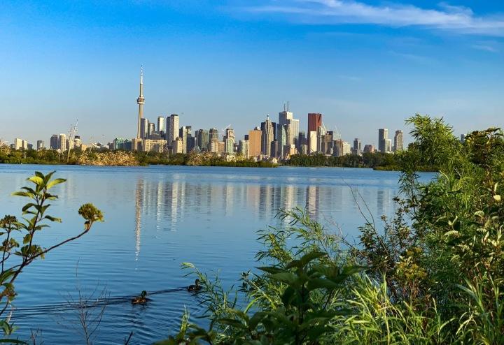Bude Toronto novým domovem královského páru?