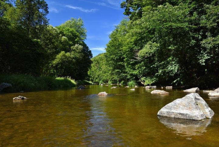 Na obrázku je řeka uprostřed přírody