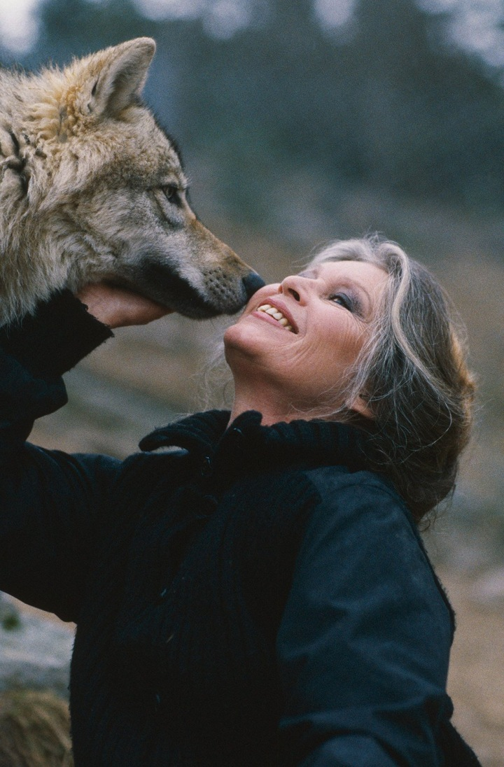 Brigitte Bardot s vlkem