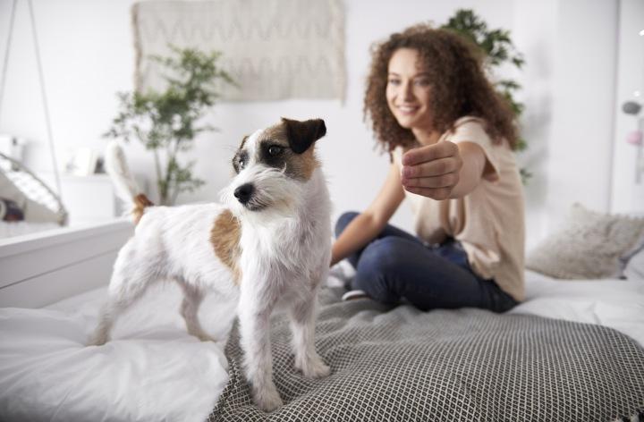 Dívka se psem v posteli