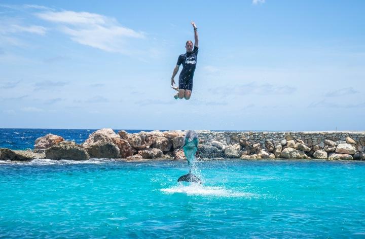 Delfín s cvičitelem ve vodě