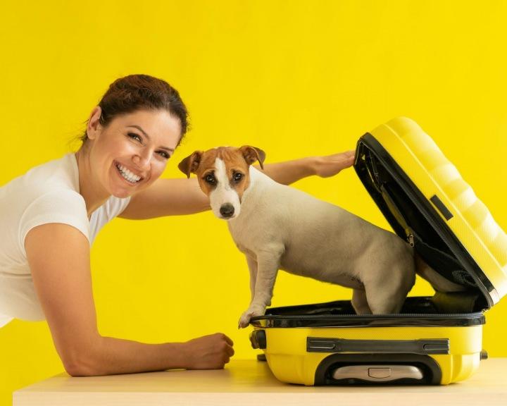 Dívka snažící se přibalit si do kufru svého psa