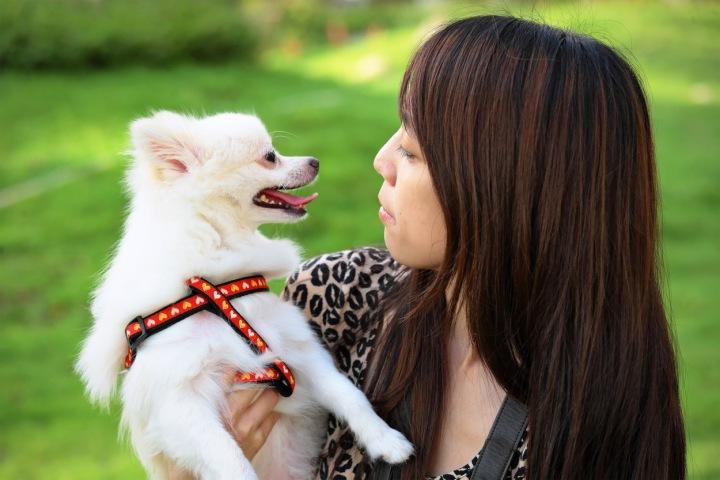 Dívka se psem.