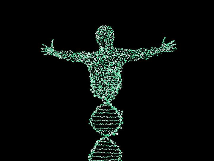 DNA člověk neovlivní.