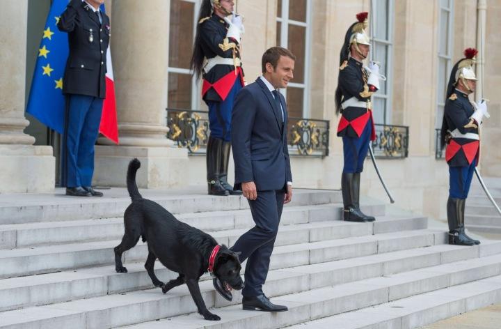 Emmanuel Macron a Nemo