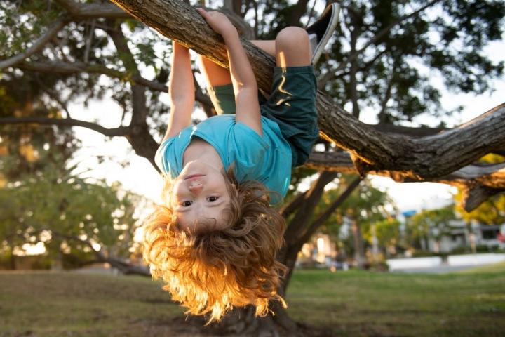 Chlapec leze po stromě.