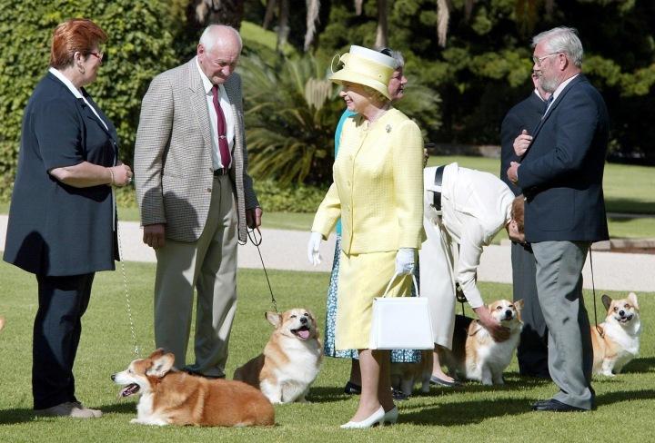 Královna Alžběta a corgiové