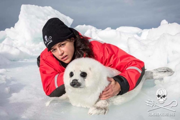 Michelle Rodrguez support the organization Sea Shepherd.