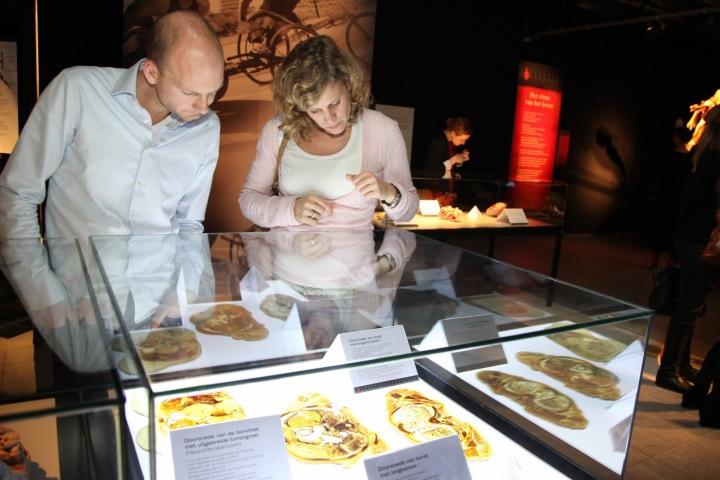 Návštěvníci vnímají výstavu edukativně.