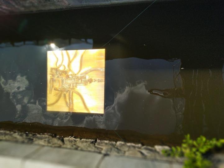 Několik obrazů pluje pod hladinou Vltavy.