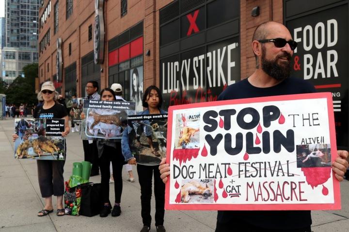 Protesty proti Festivalu psího masa.