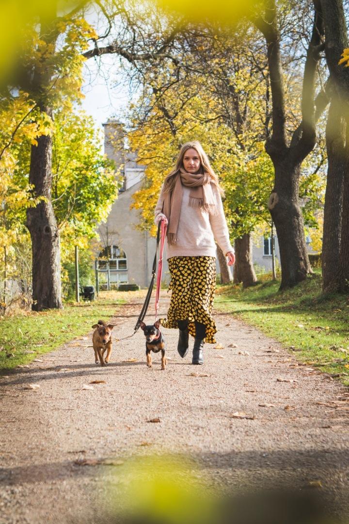 Žena na procházce se psy