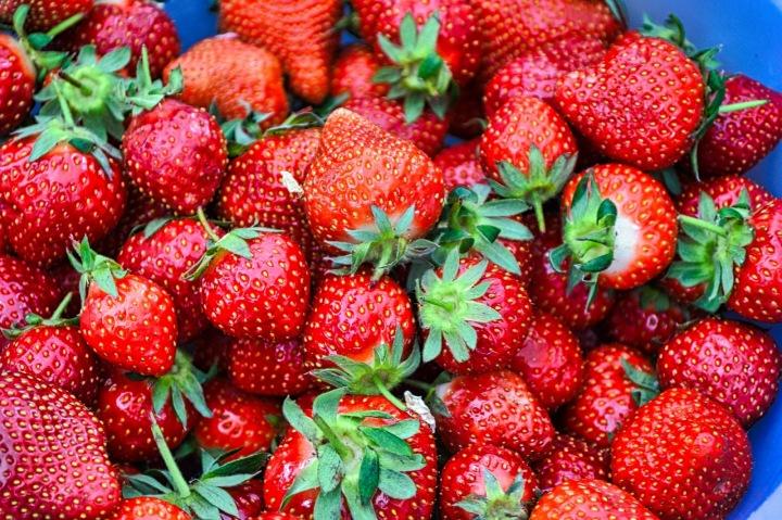 Milujete jahody? Zajeďte si pro ty nejlepší!