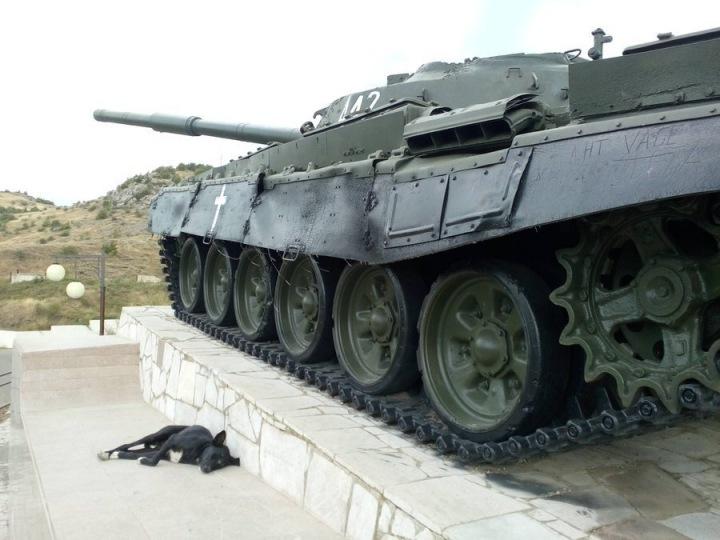 Tank a pes ležící vedle