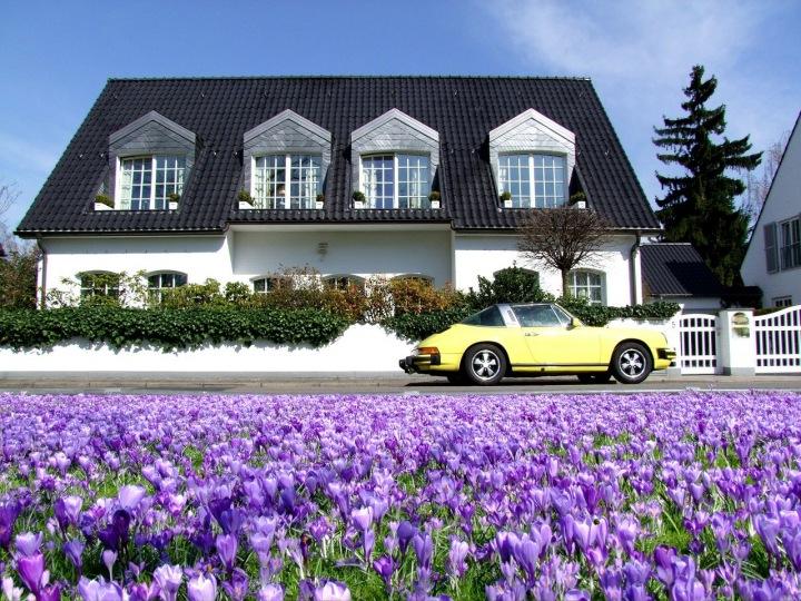 Villa s autem a květinami