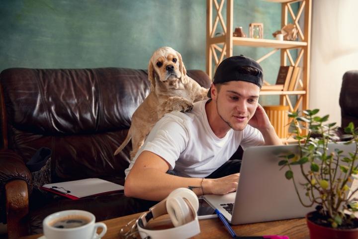 Mladík se psem u počítače v nově zrekonstruovaném bytě