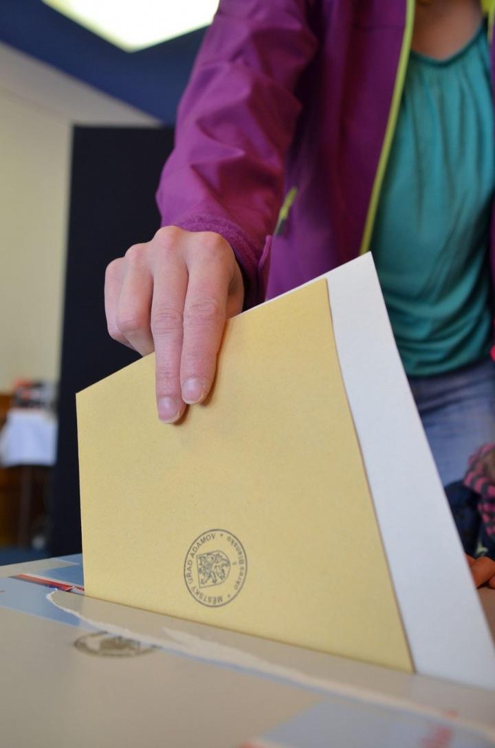 Žena při volbách