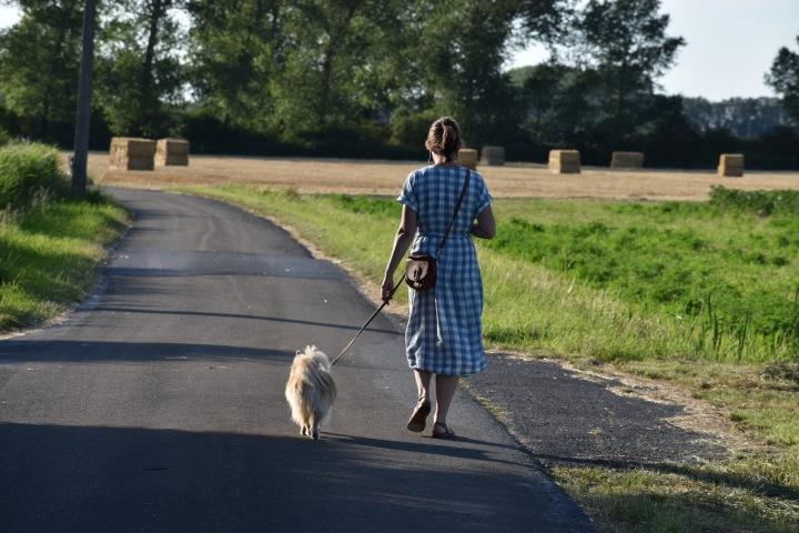 Žena venčí psa.