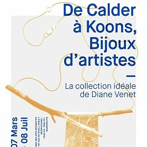 Výstava Diane Venet