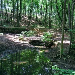 Park Rokytka