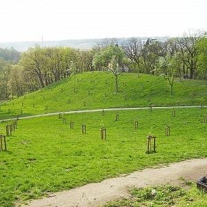 Park Cbulka
