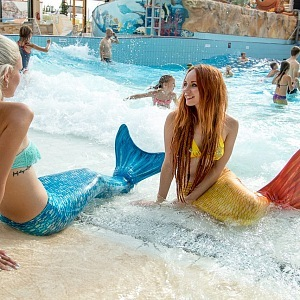 Would you like to be mermaid?