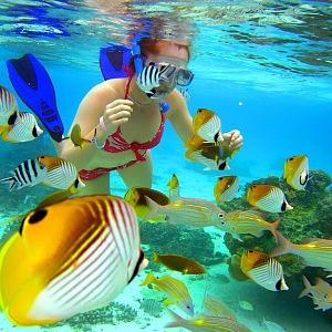 V moři u Rarotongy poznáte neuvěřitelný podmořský život