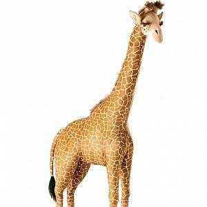 Obří žirafa