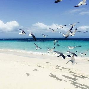 Portoriko má jedny z nejkrásnějších pláží na světě!
