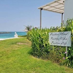 SAE - Zaya Nurai Island