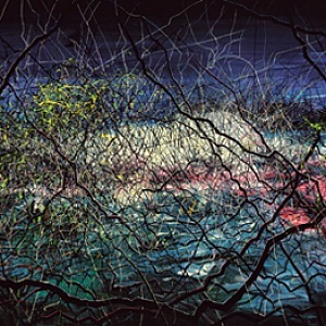 Pure Land, 2012, 350x1000cm