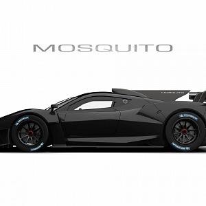 Mosquito in black