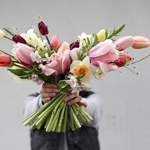 Louky květ