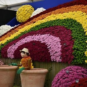Květiny byly v působivých instalacích.