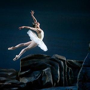 Labutí jezero, Royal House Opera