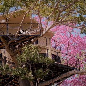 TreeCasa resort, Nikarague