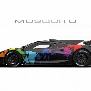 Mosquito in colors