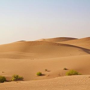 Nezapomenutelný pobyt v poušti