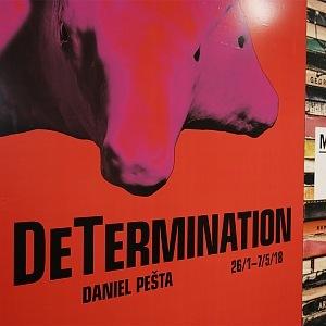 DeTermination, Daniel Pešta in DOX