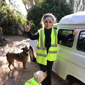 Brigitte Bardot ve žluté vestě se psy