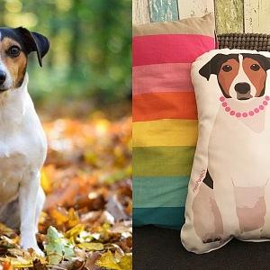 Designy podle skutečných psů