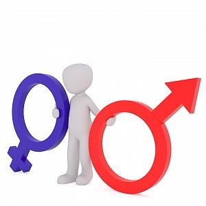 Gender, velké téma, velká diskuse.