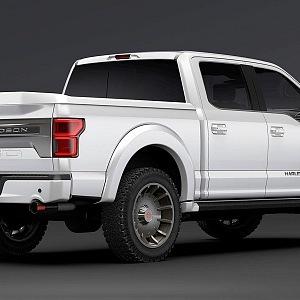 Ford v bílém provedení