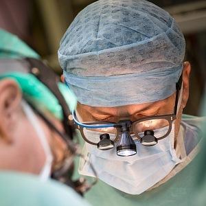 Zatím je transplantace ve fázi studie.